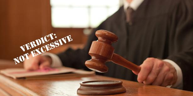 Judgement Not Excessive
